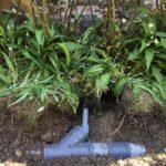aanleg hemelwaterafvoer en drainage gescheiden riolering Dilbeek_3 - Massaert bvba
