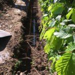 afkoppeling scheiden riolering Sint-Pieters-Leeuw 17 - Massaert bvba