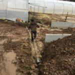 gescheiden riolering terras oprit polybeton Sint-Pieters-Leeuw_0675 - Massaert bvba